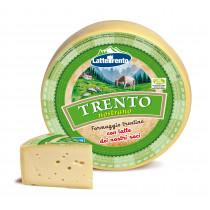 formaggio trentino saporito