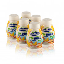 yovolo yogurt alla pesca 200 ml