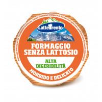 FORMAGGIO FRESCO SENZA LATTOSIO ALTA DIGERIBILITÀ' 380 gr